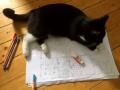 My ist eine wirklich grosse Hilfe bei der Planung